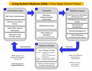 living-systems-medicine-four-stage-clinical-process